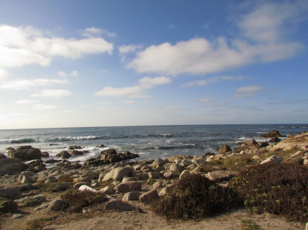The beach in Monterey. Still lots of rocks but at least there is sand here!