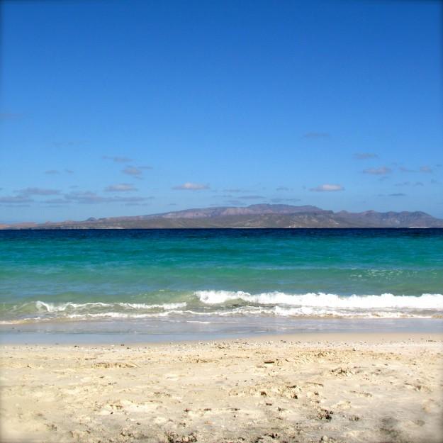 Playa Tecolote.  I called it Dog Heaven.