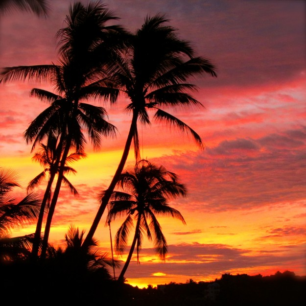 Sayulita sunset. We went to the beach every evening to watch this and so My Family could drink 'Sundowners.'
