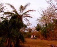 Casa Rural Aroms de Campo