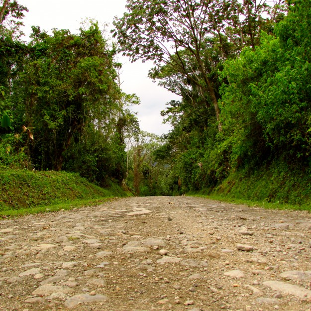The road to Monteverde.  Not cool.