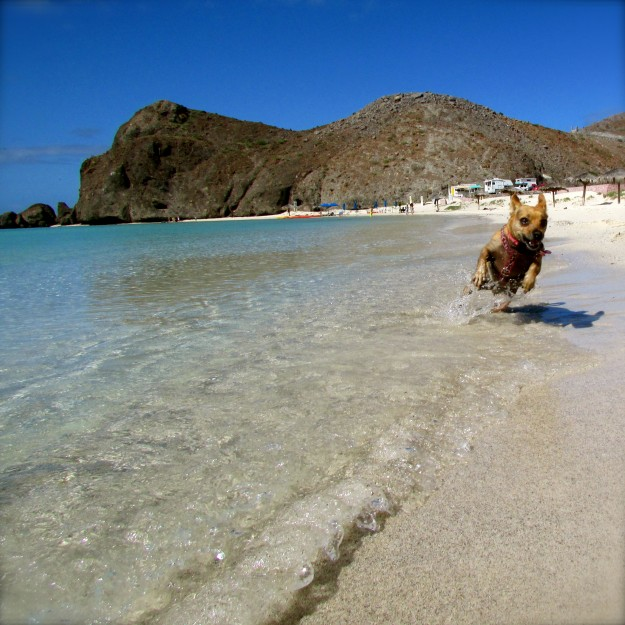 Me running on the beach in Baja.  Life really doesn't get better than this!